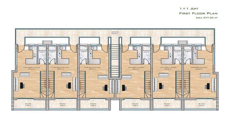 1+1 apt first floor plan